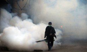 control dengue virus