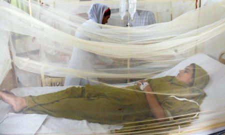 Dengue control programme