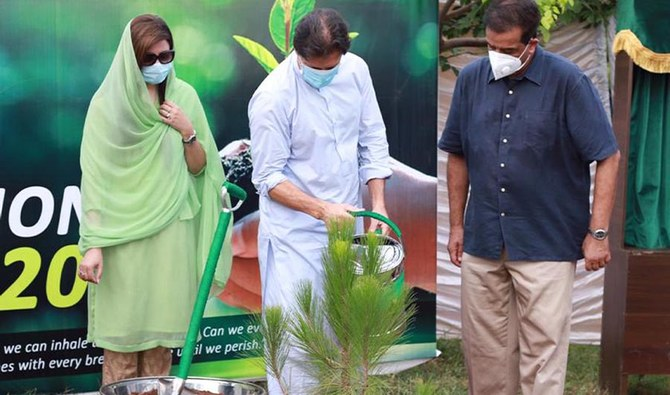 Imran tree plantation drive