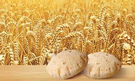Khyber Pakhtunkhwa wheat