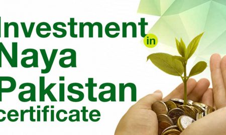 Naya Pakistan certificates