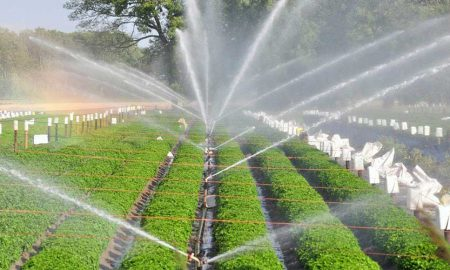 Drip irrigation Pakistan