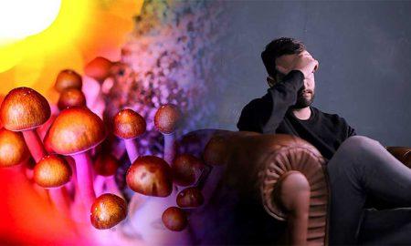 Psilocybin mushroom depression