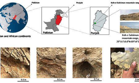 montmorillonite Punjab