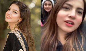 Dananeer Pawri