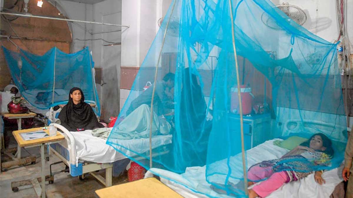 Malaria Pakistanis