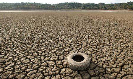 World Bank climate