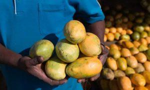 mango target