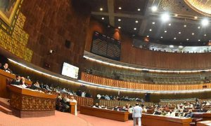 National Assembly budget