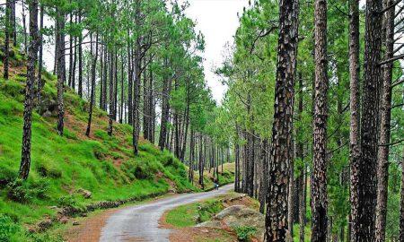 Punjab national parks