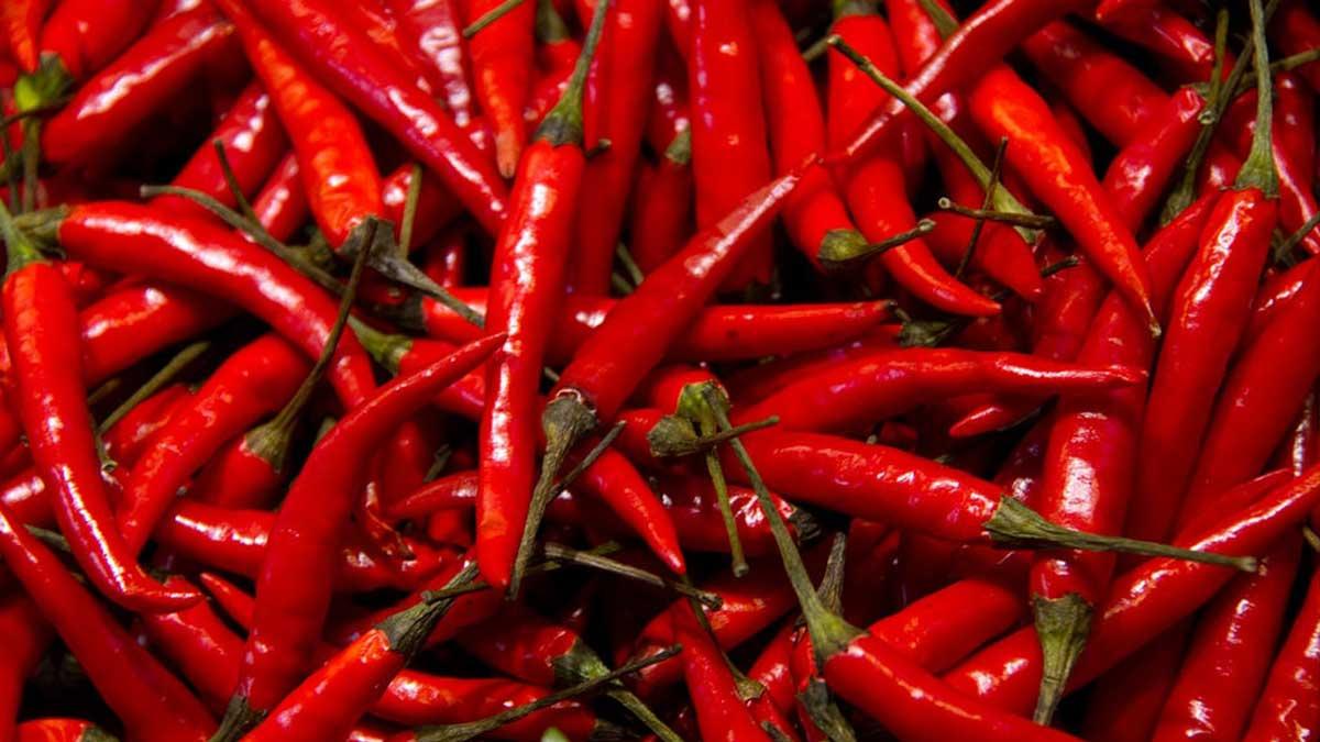 China chillies