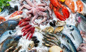 China seafood