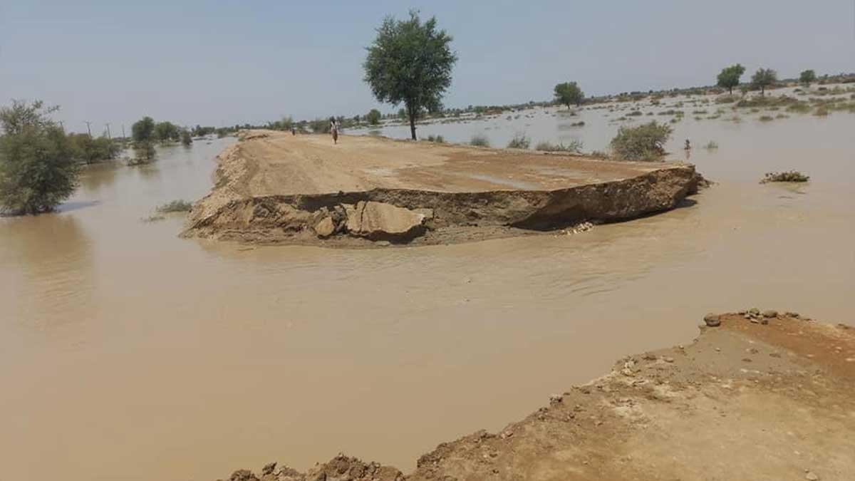 Dadu flood