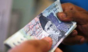 Domestic debt liabilities