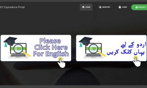 IBCC e-portal
