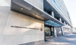 IMF economic activity