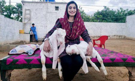 Sania Munif