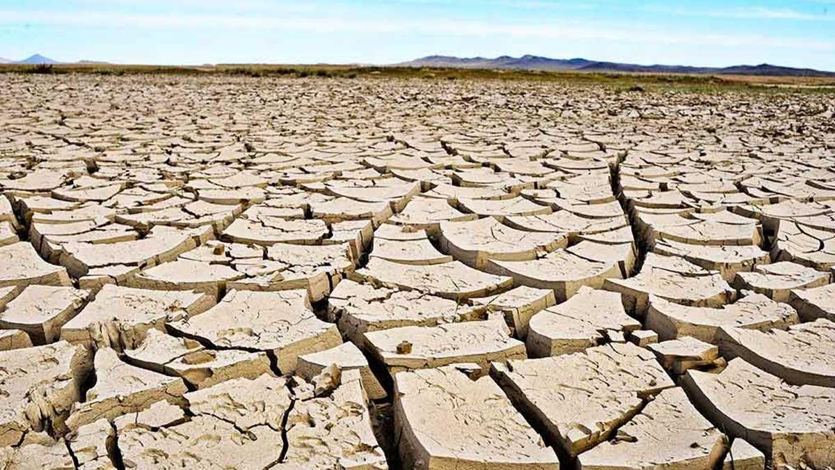 famine like situation