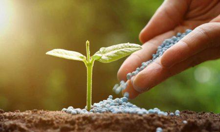 Fertilizer prices