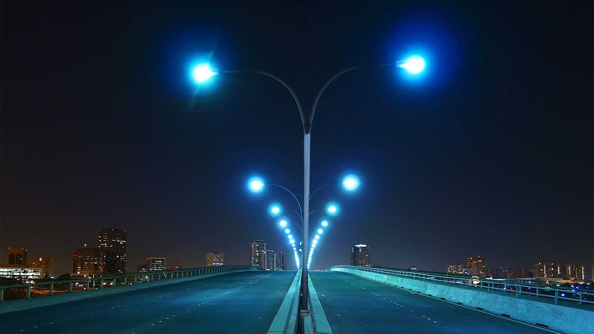 Streetlights insect