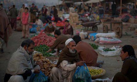 food security management