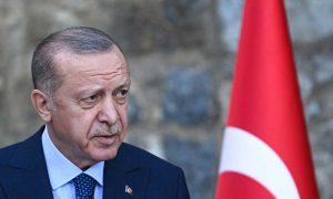 Erdogan ambassadors