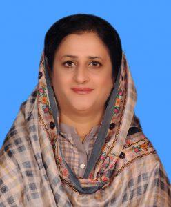 Dr. Mahreen Razzaq Bhutto
